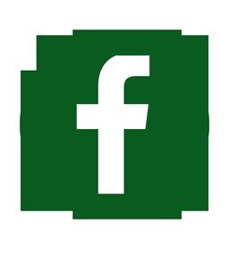 facebook-256-green